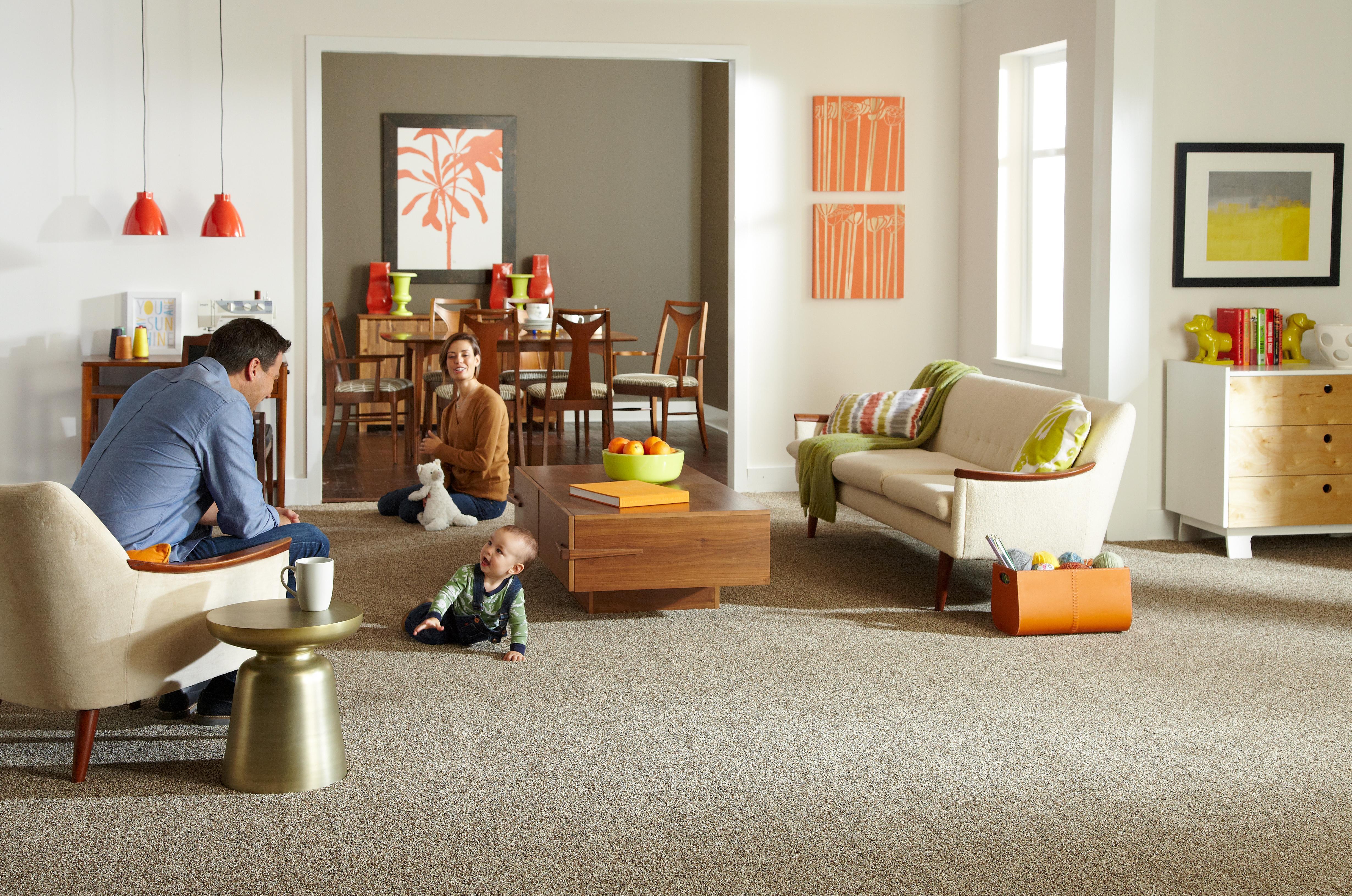Carpet Remnants Michigan Centerfordemocracy Org